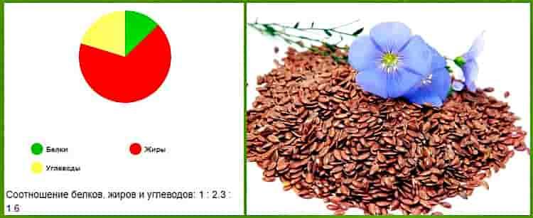 Полезные свойства семян льна и противопоказания