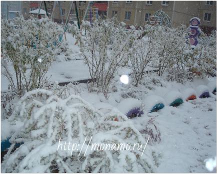 первый снег на детской площадке