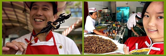 поедание насекомых