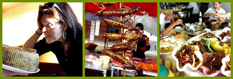 сыр- блюда из насекомых