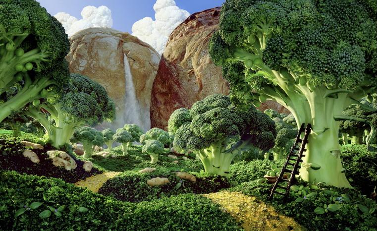 Лес брокколи