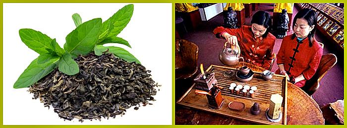 химический состав зеленого чая