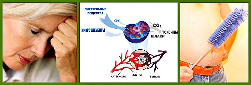 зашлакованность организма