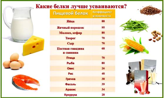 признаки недостатка питания у огурцов фото