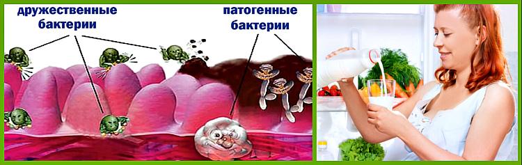 применение бактерий при беременности