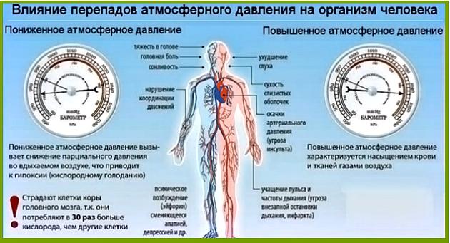 атмосферное давление и организм
