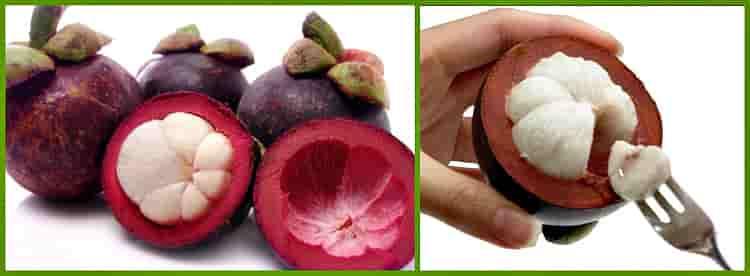 плоды мангостана