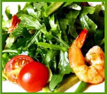 Салат руккола: польза и вред для организма человека