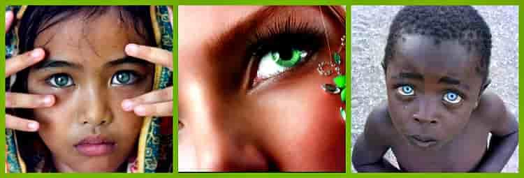 как формируется цвет глаз