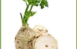 корень сельдерея