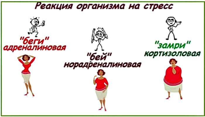 реакция организма женщины на стресс