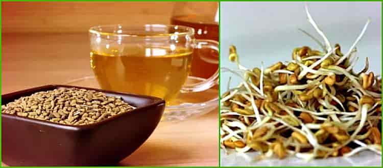 чай и семена пророщенные