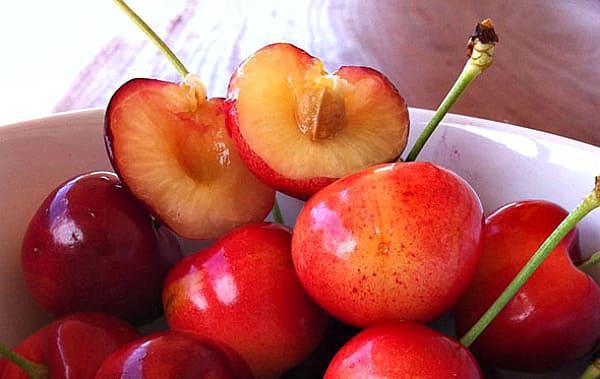 плод костянка