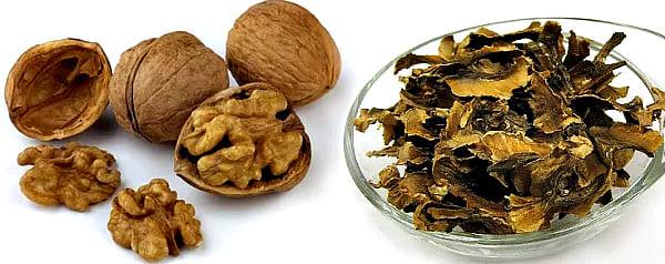 перегородки грецкого ореха
