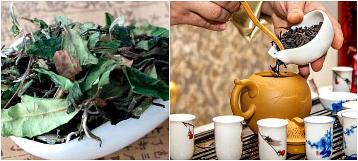 чай гун мэй