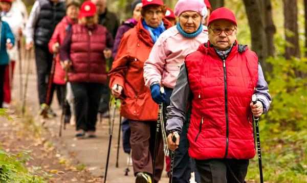 польза для пожилых
