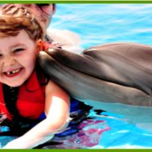 delfinoterapiya